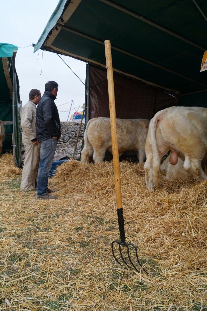 L'Association des Éleveurs Charolais de la Marne et de l'Ile de France est dans la place pour la dix-septième année consécutive.