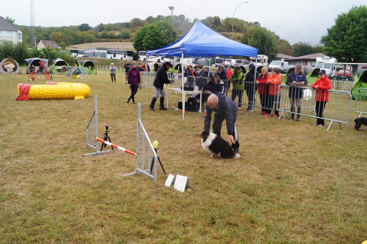 Conducteurs et chiens effectuent ici un parcours de jumping...