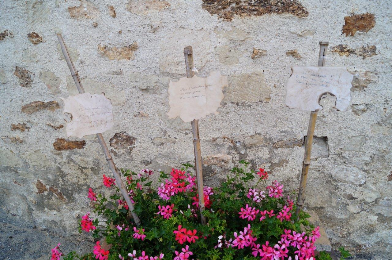 Les haïkus des élèves de CM2 de l'école publique de La Madeleine de Château-Thierry sont plantés dans les potées et le parterre fleurissant la place de l'église...