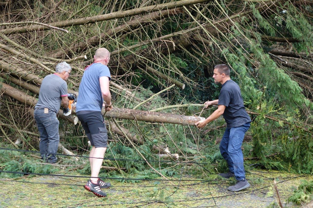 De gauche à droite : les Condéens Michel Hazard, Georges Lefèbvre et Dany Tutin ont retroussé leurs manches comme bien d'autres, tôt dimanche matin, pour dégager les arbres...
