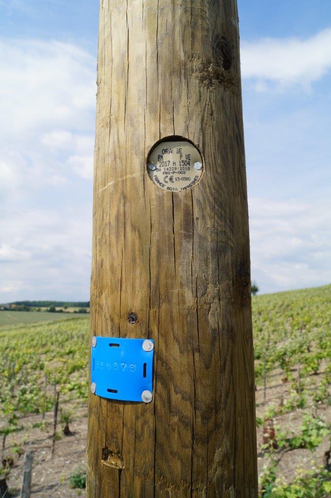 Un poteau fabriqué dans la Loire par France Bois Imprégnés, 1er producteur français des poteaux électriques et télécommunications.