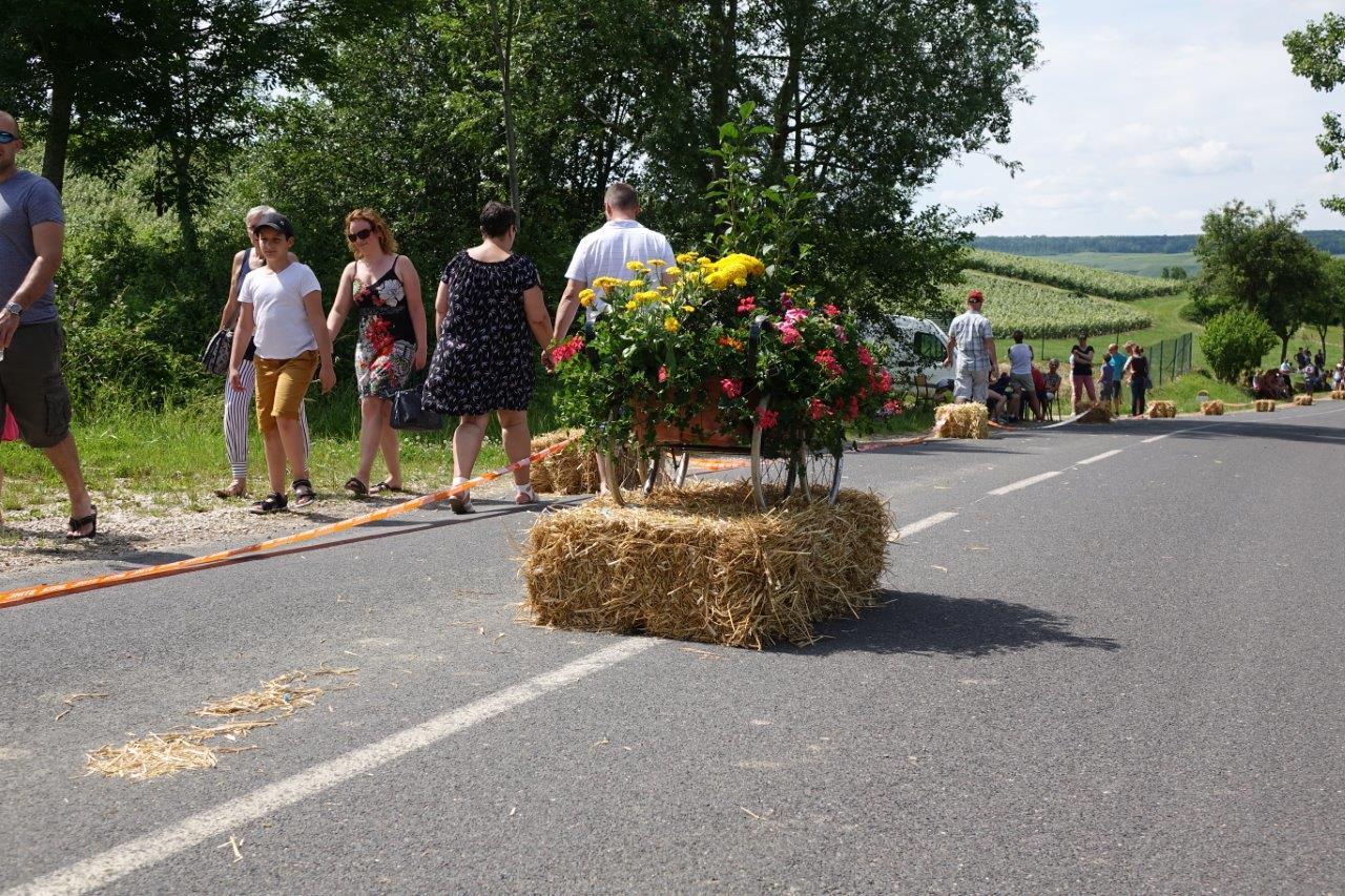 L'association du fleurissement de Dormans et ses hameaux a pris en charge la décoration d'un landau ancien.