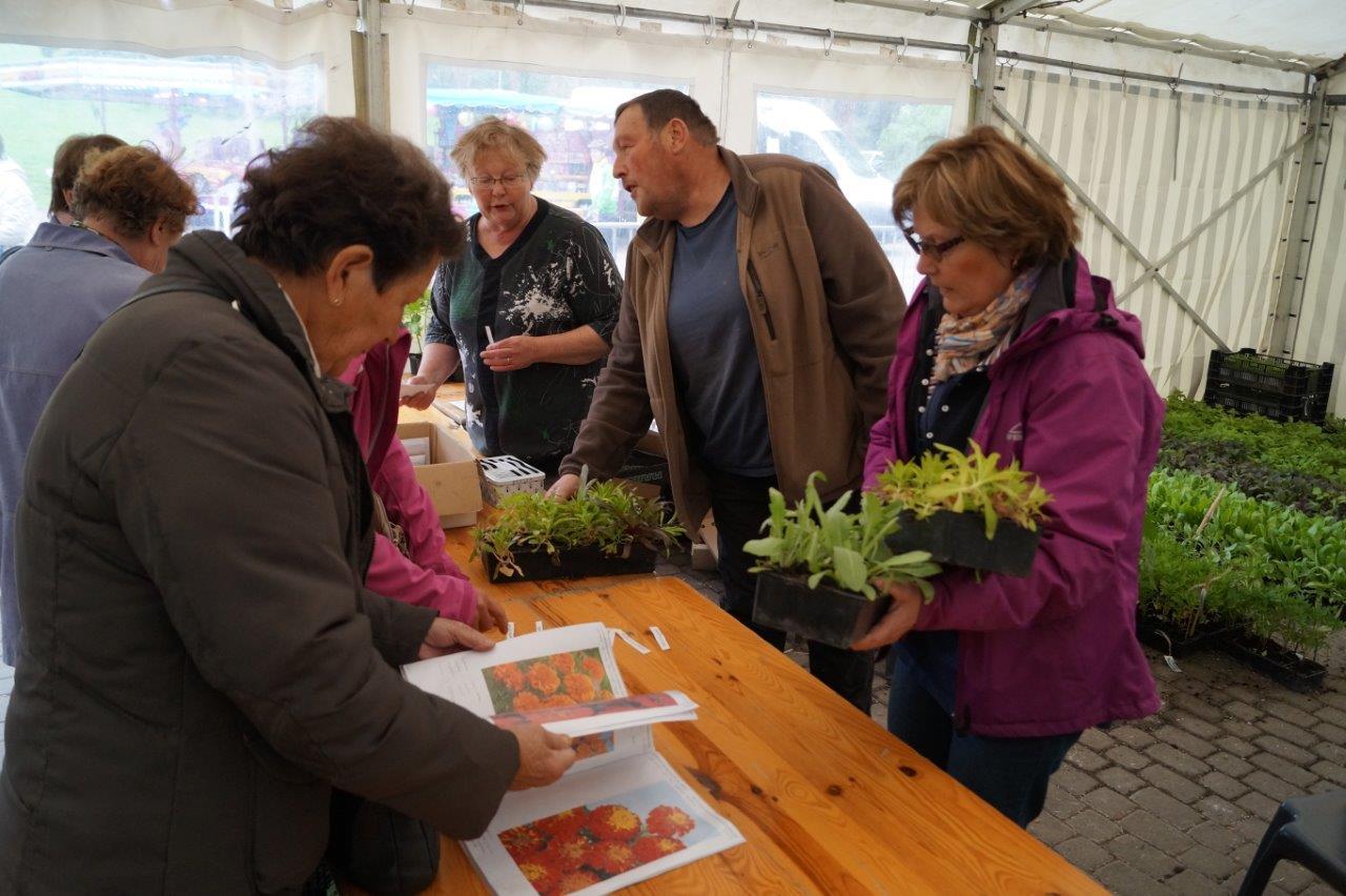 Organisatrice de la manifestation, l'association pour le fleurissement de Dormans et ses hameaux proposait un large choix de plants.