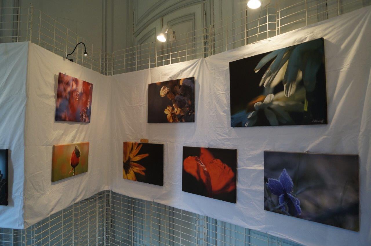 """""""Perles de pluie et Ombres de lumière"""" est une exposition photo fascinante de Florence Chivaroff."""