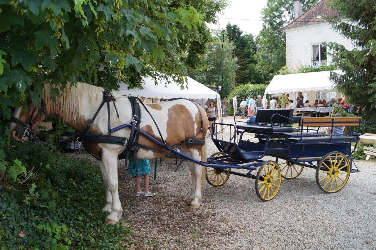 L'Attelage du Mont Picheny proposait une balade gratuite autour de Condé-en-Brie.