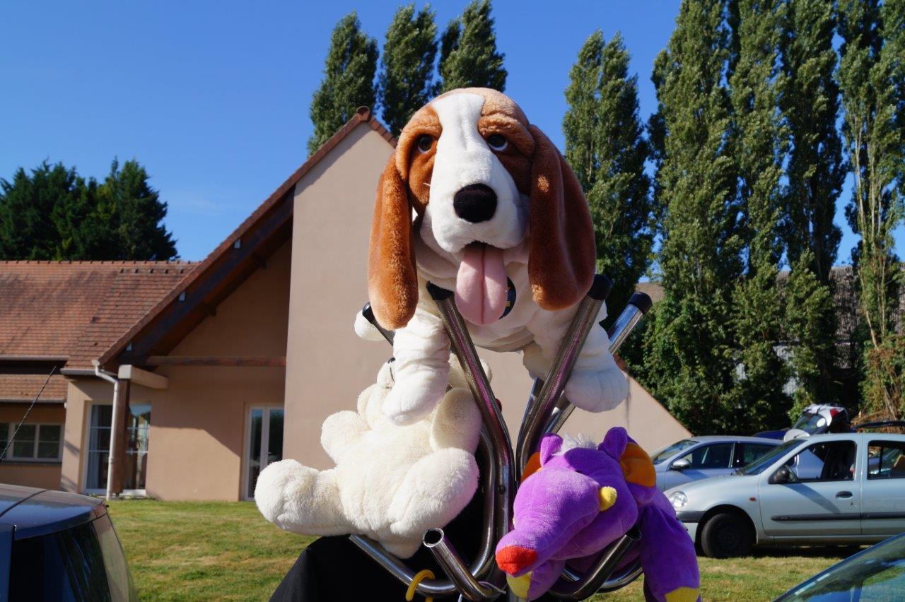 Si l'exposant tire des plans sur la comète, son chien tire, lui, la langue sous le soleil.