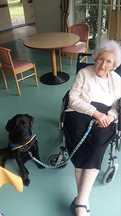Marie-Louise Willems est ici avec Milo, le chien d'accompagnement sociel. Ce dernier officie dans les EHPAD de l'agglo depuis cette année.