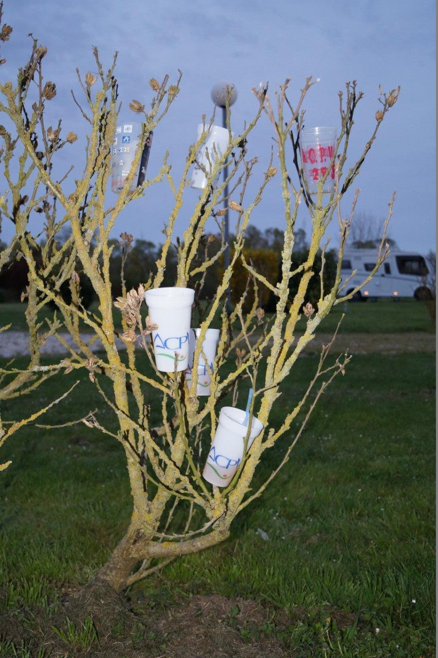 L'arbre à verres est une installation éphémère de l'ACPV Saint-Eugène.