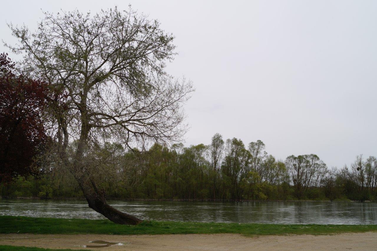 Ce camping 3 étoiles est implanté à deux pas de la Seine.