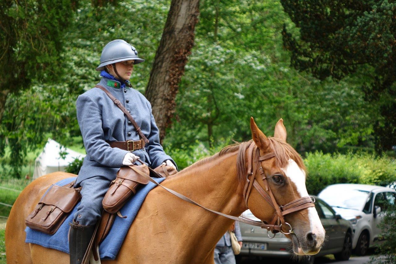 Les chevaux, qui travaillaient pour la plupart d'entre eux dans les campagnes, ont été réquisitionnés lors de la Grande Guerre.