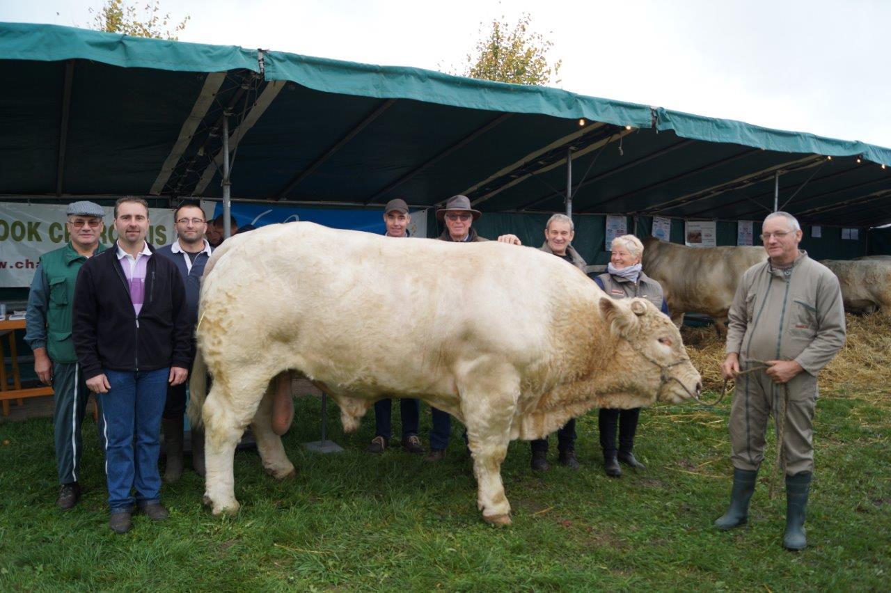 Les adhérents de l'Association des éleveurs Charolais de la Marne et d'Ile de France entourent Jamesbond, 4 ans, 1 500kg. Ce reproducteur aux nombreuses récompenses appartient à M. Joël Reser de l'EARL du Grand Broué à Chatillon-sur-Broué (51).
