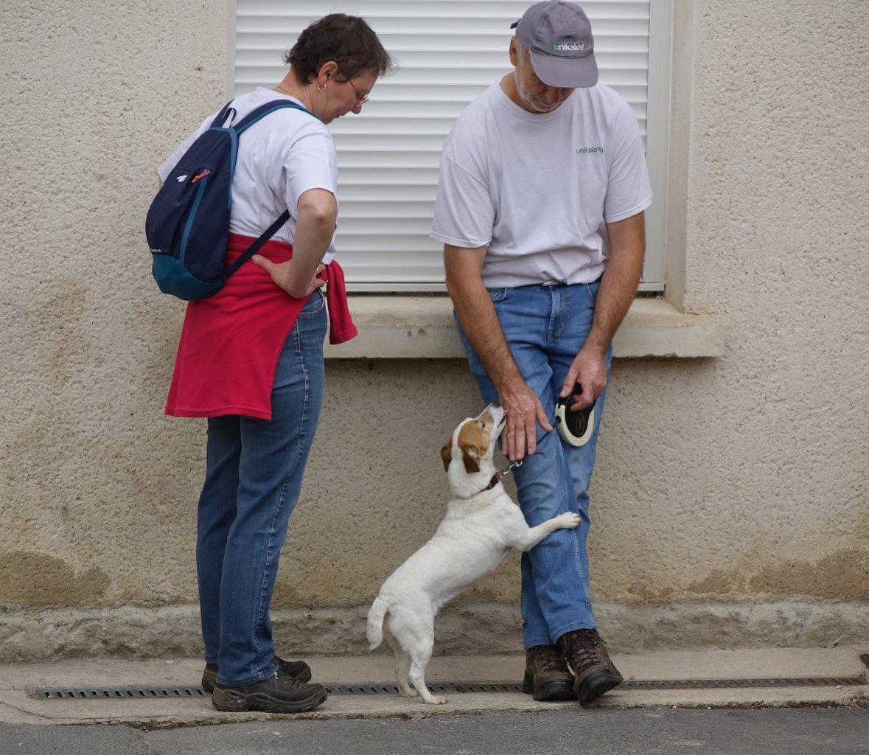 Deux chiens ont également participé à la randonnée pédestre...