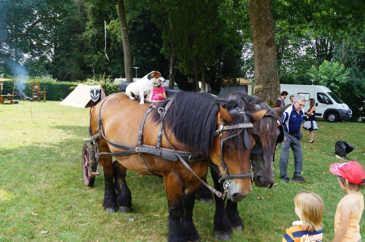 Hue dadas ! La découverte du parc verdoyant du château en char à bancs Champ' A Cheval rencontre le succès...