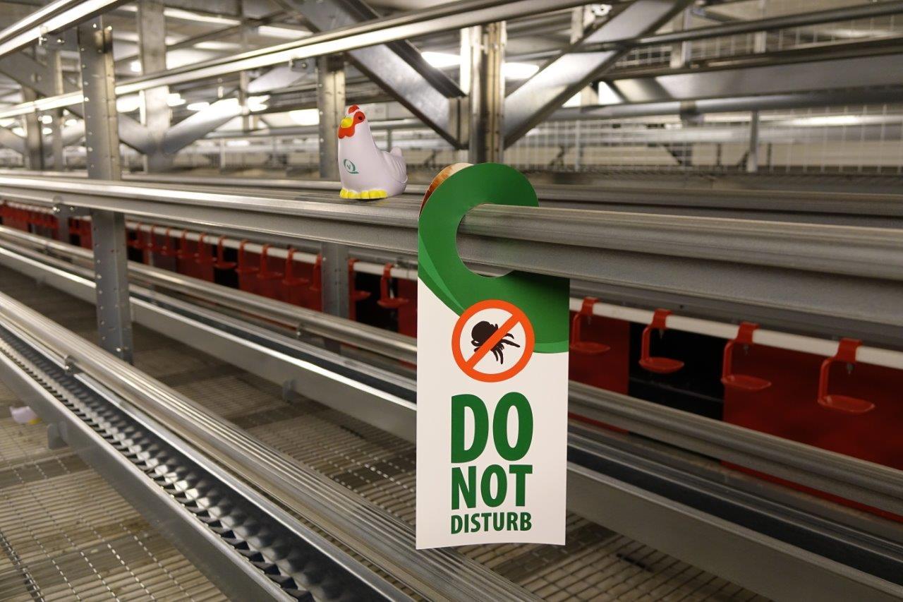 Le fabricant néerlandais Vencomatic a mis au point des barrières faiblement électrifiées pour protéger les poules de certains parasites, en particulier des poux rouges..