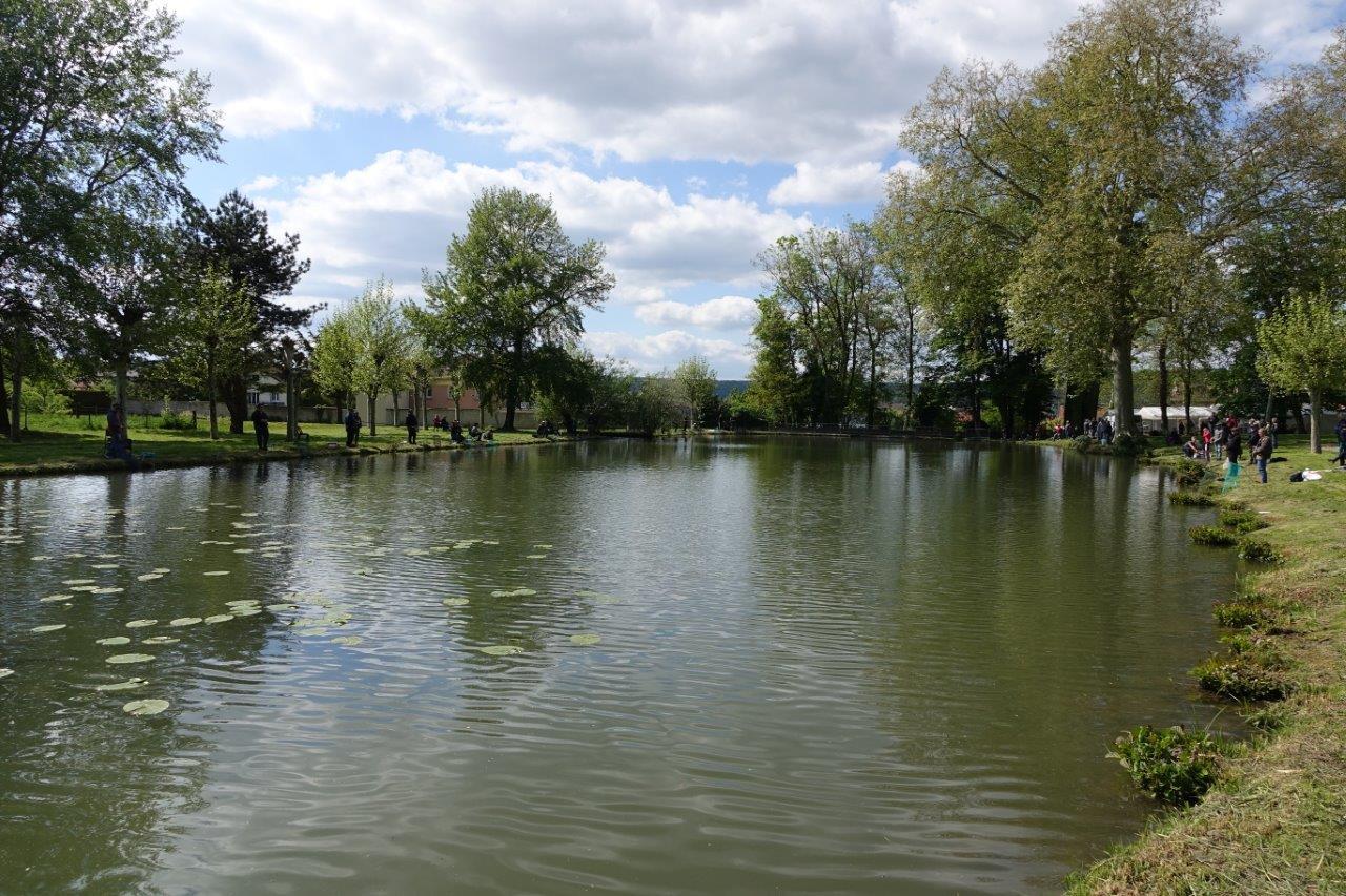 A Dormans, l'étang du château est un site idéal pour la pratique de la pêche.