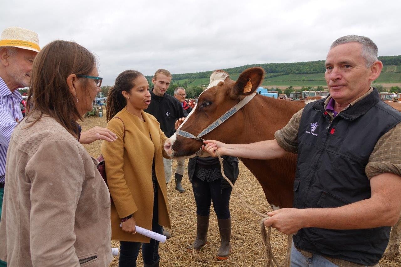 La sous-préfète fait la connaissance de Jazzy, la vache vedette du lycée d'enseignement général et technologique agricole de Crézancy.