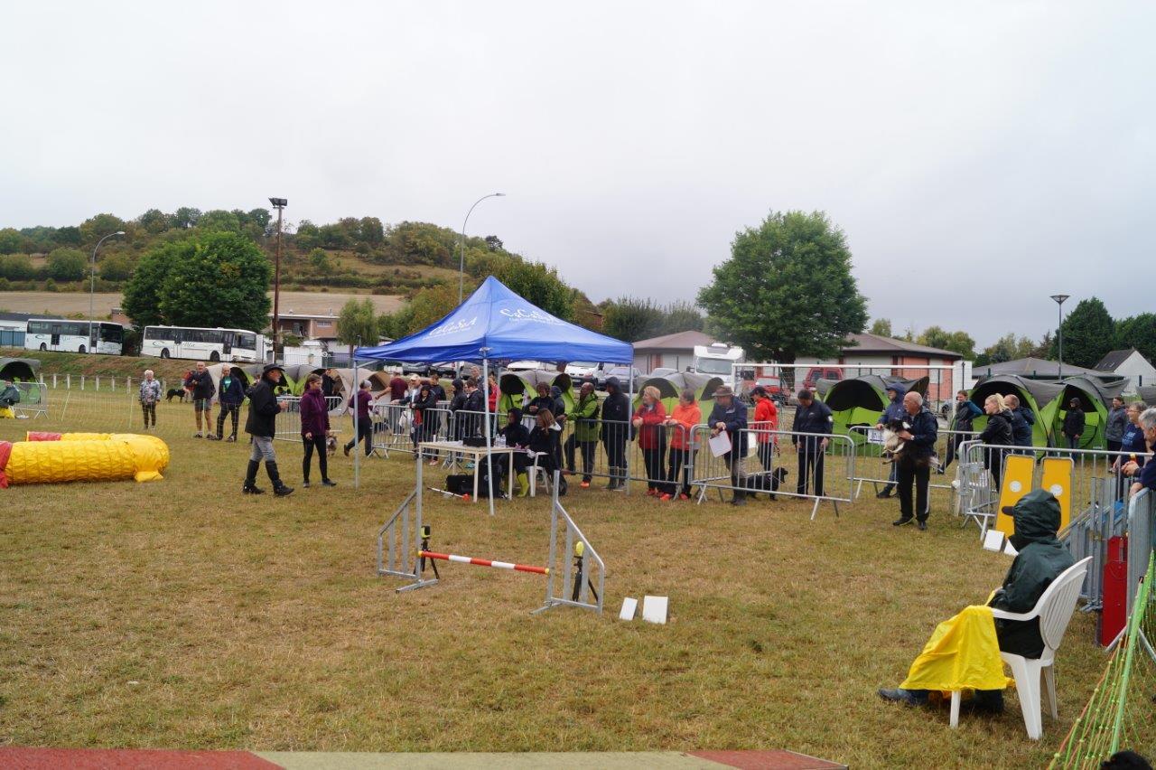 Les concurrents du concours d'agility sont plus nombreux que les spectateurs.