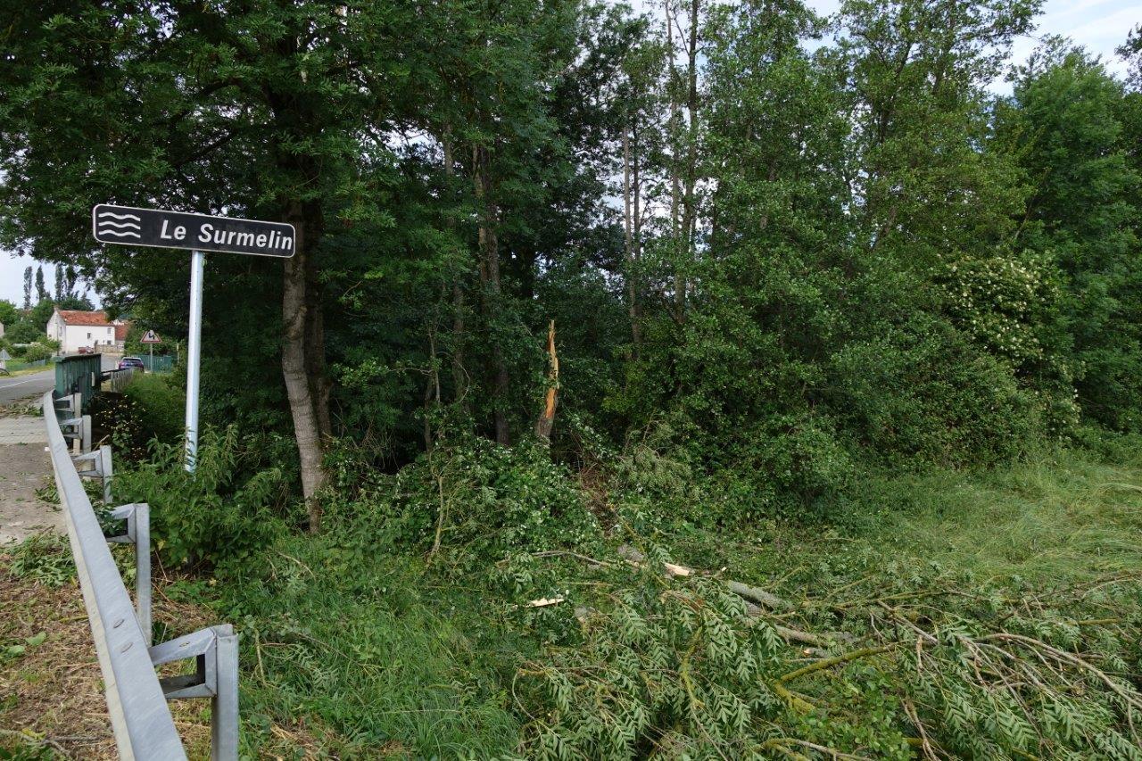 À Celles-lès-Condé,  il faudra retirer de nombreux arbres tombés dans le Surmelin..