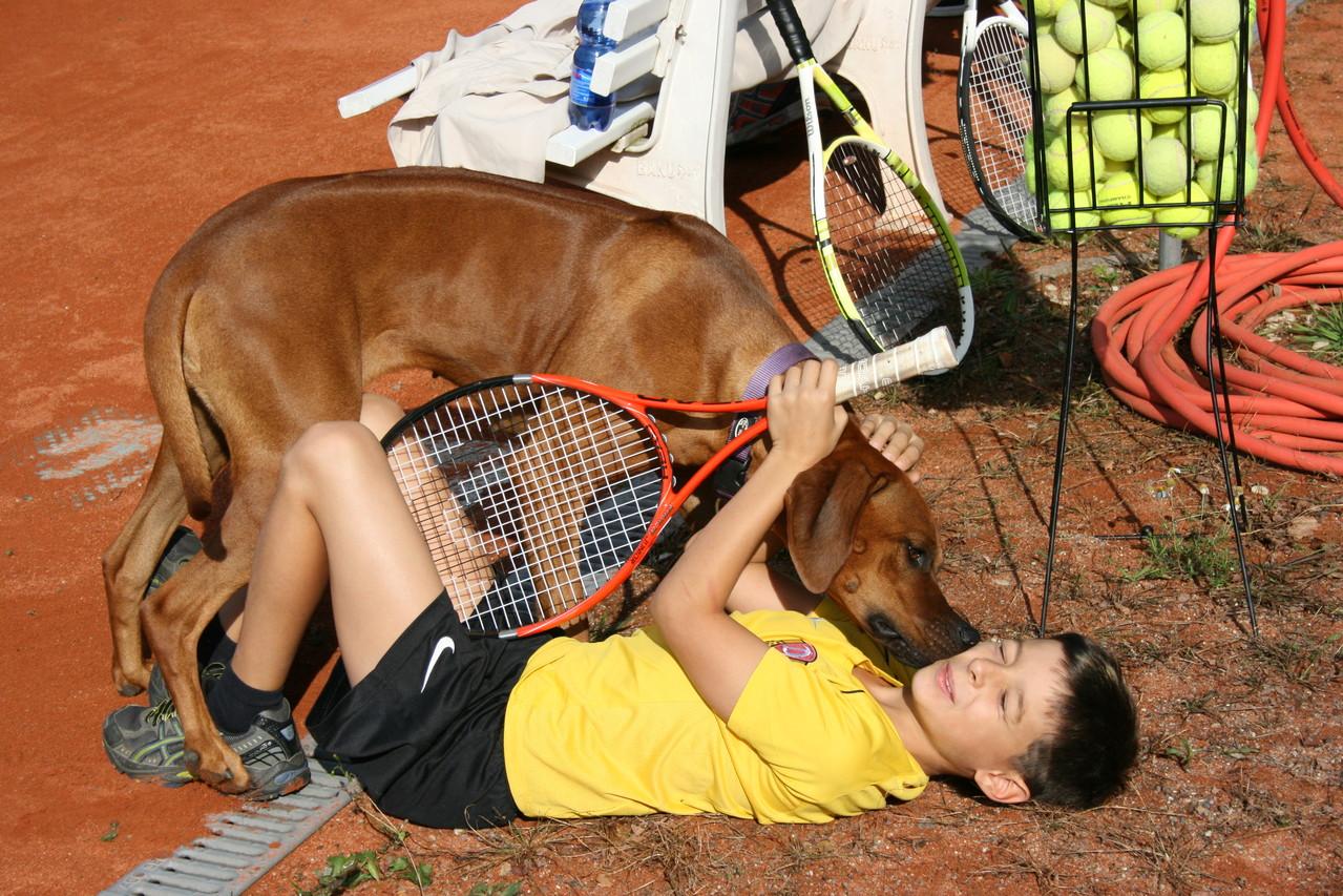 Während des Turniers kommt es zu ungewöhnlichen Zärtlichkeiten zwischen Mensch und Tier.
