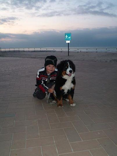 Promenade à la mer ( Koksijde)