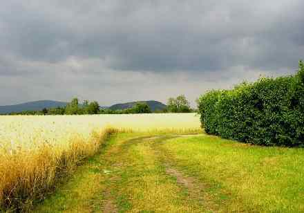 """""""Dunkle Wolken am Himmel"""" Foto von Johanna."""