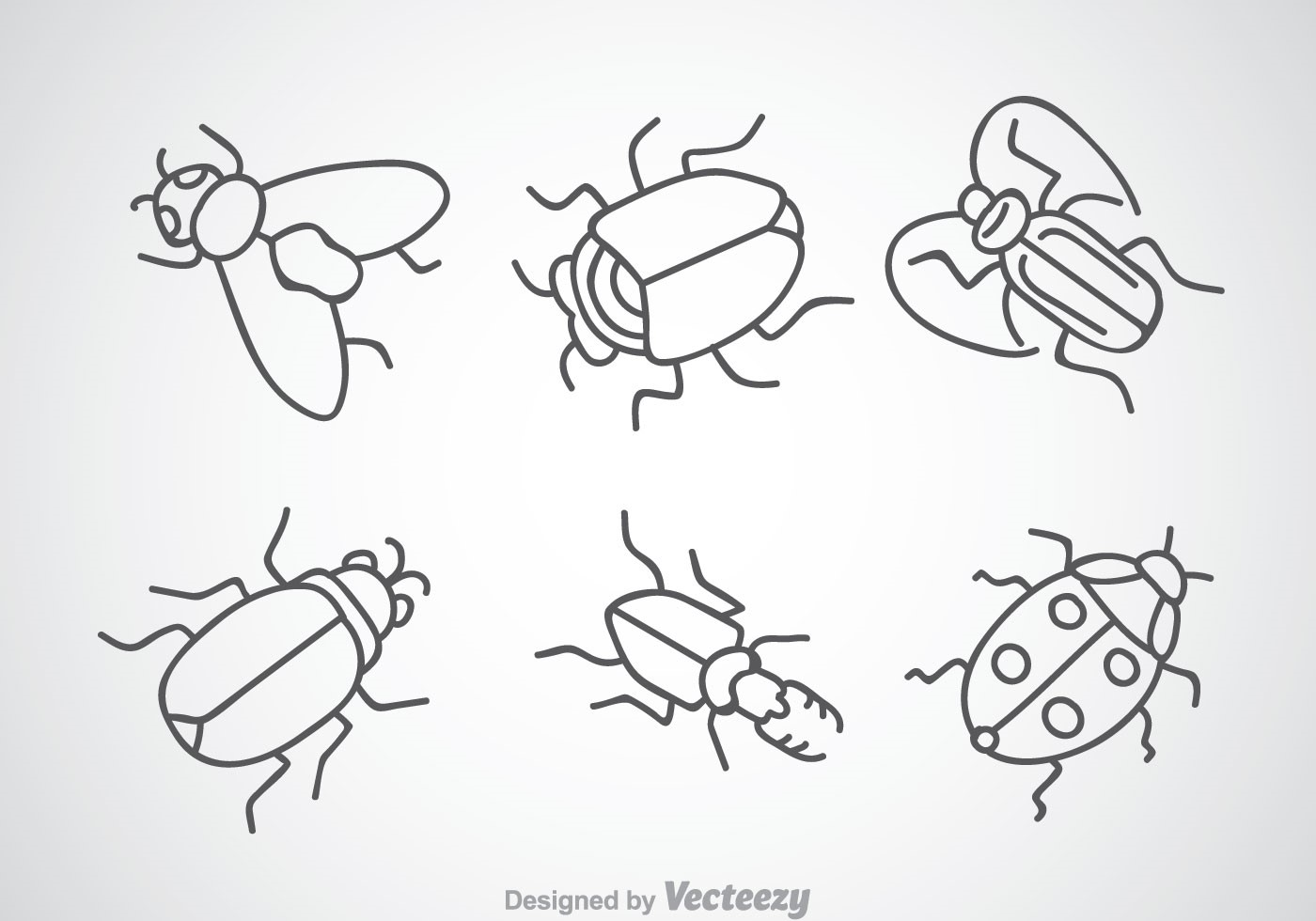 Les répulsifs contre les insectes