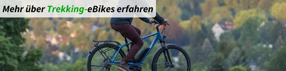 Infos über Trekking e-Bikes
