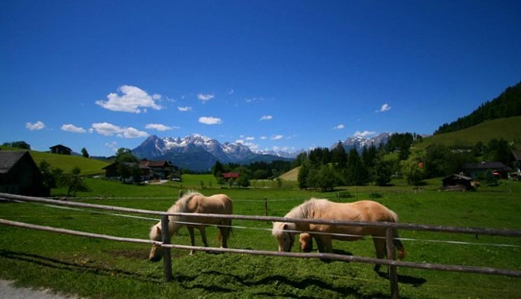 Bild: Ein wunderschönes Bergdorf erwartet  Sie