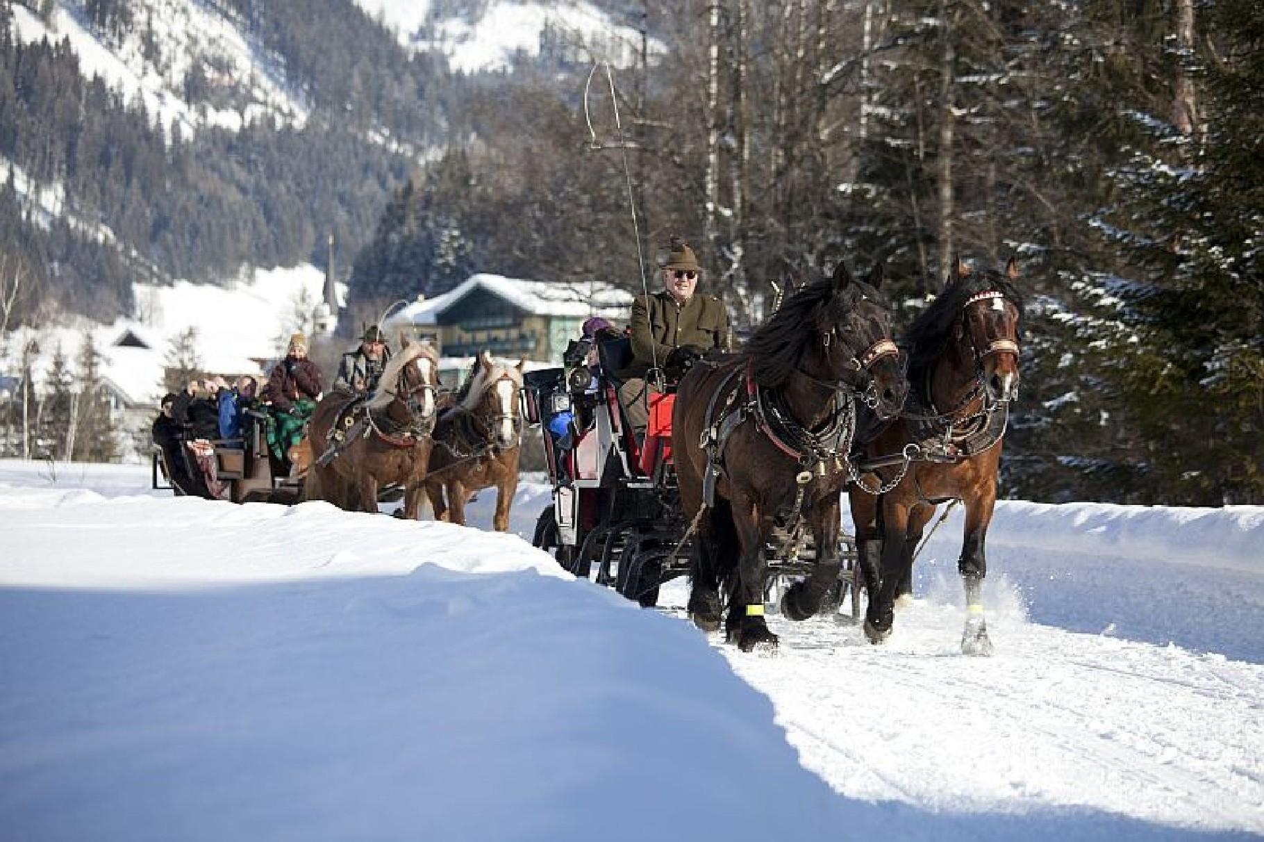 Bild: Pferdeschlittenfahrten werden angeboten