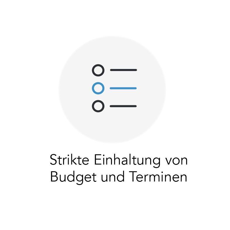 Strikte Einhaltung von Budget und Terminen