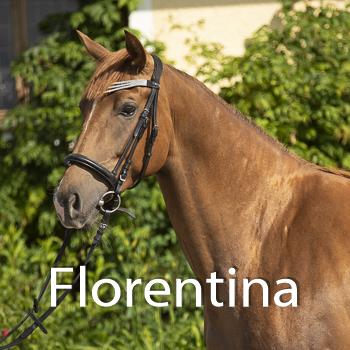 Florentina-B