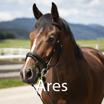 Ares-B