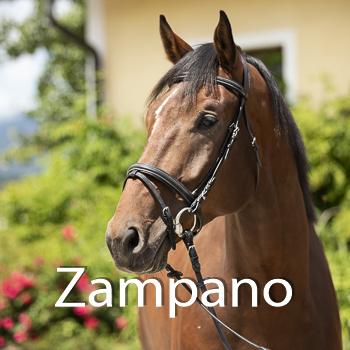 Zampano-B