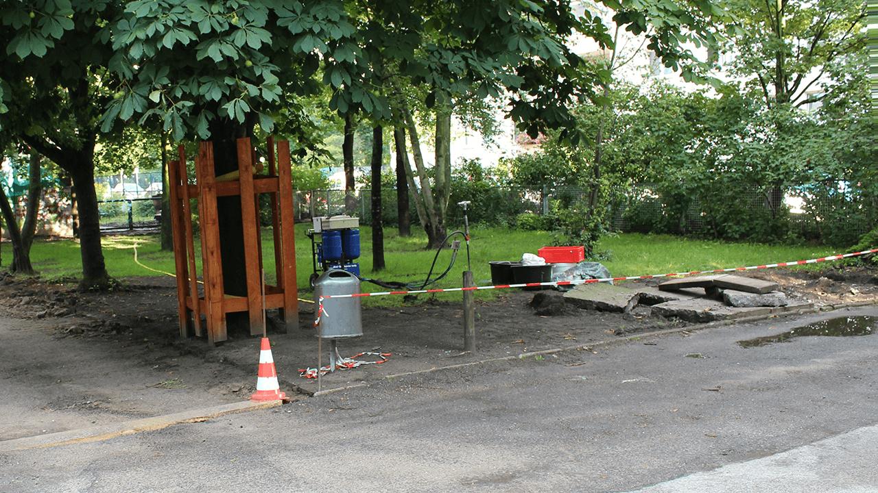 Revitalisierung der Baumstandorte nach einer Baustelle