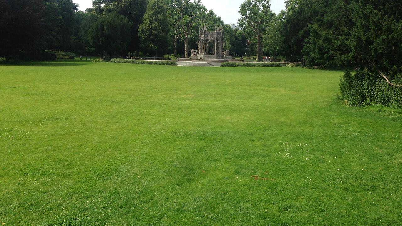 NACHHER: Rasenfläche nach der Standortsanierung