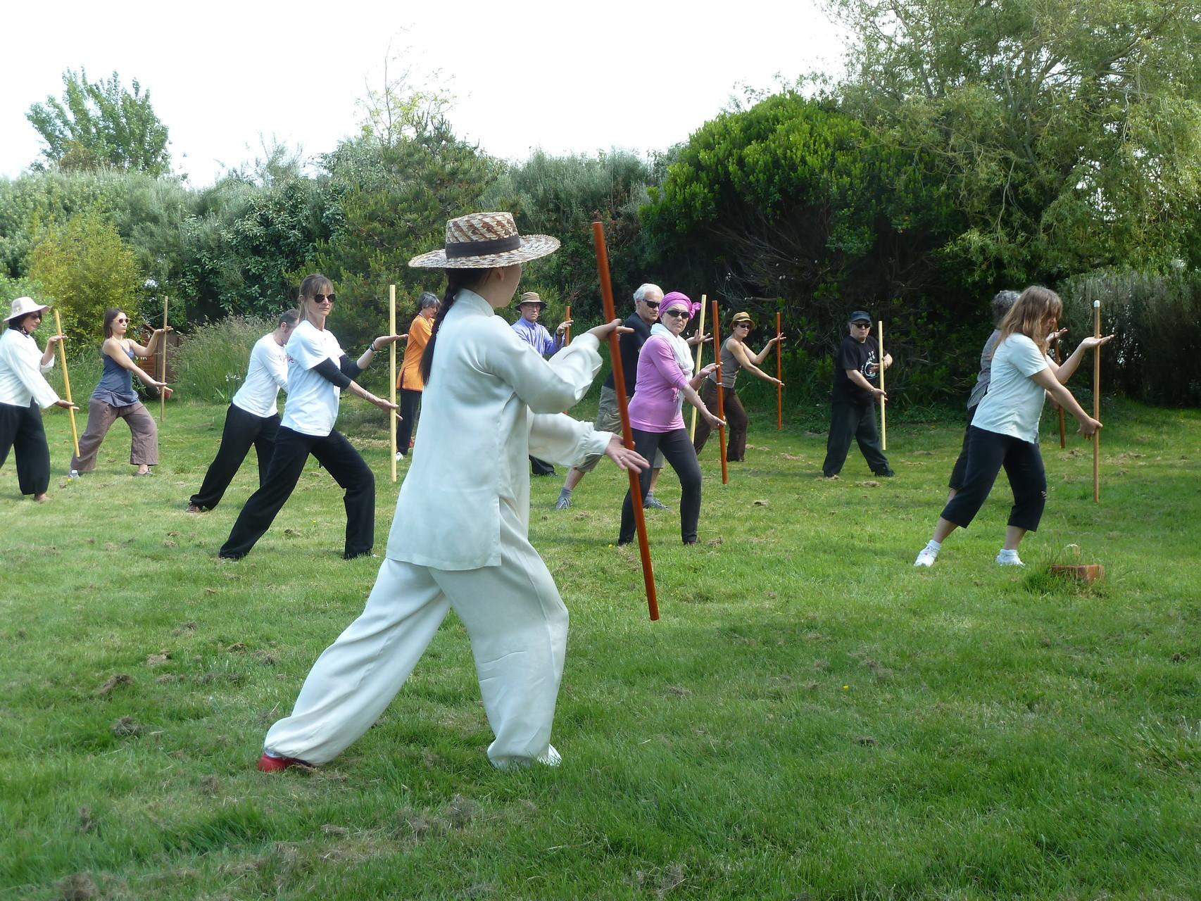 2013 - Pratique champêtre du Qi Gong du bâton avec Wang Yan Li à l'île d'Arz
