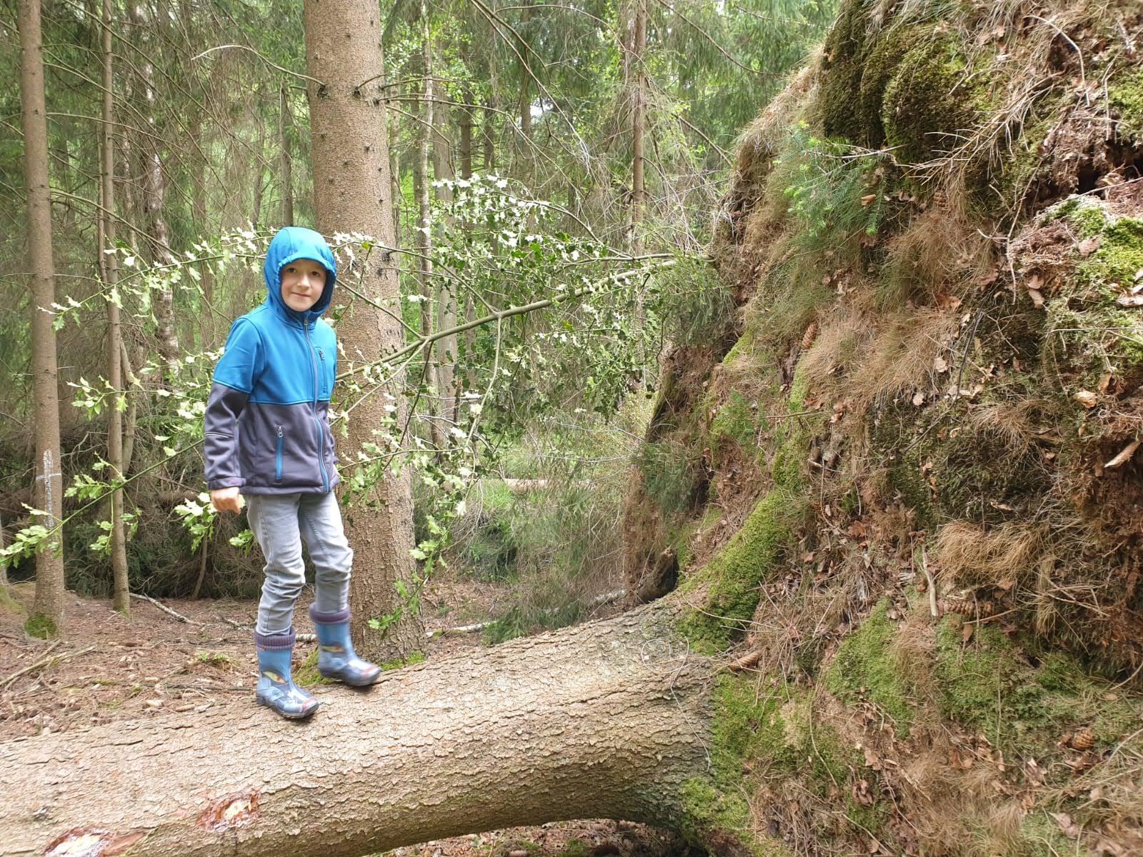 ... mit Melvin am Oberlauf der Iter im Münsterwald