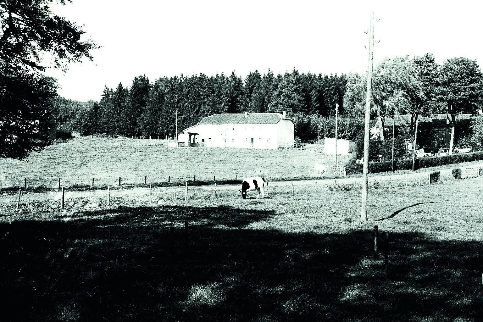 Flög 1960
