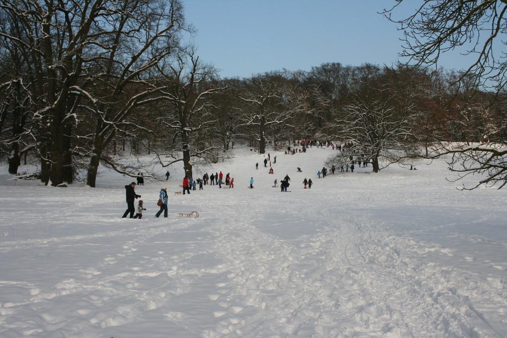 Im Winter fahren die Kinder im Volkspark oder im Schwarzen Grund Schlitten