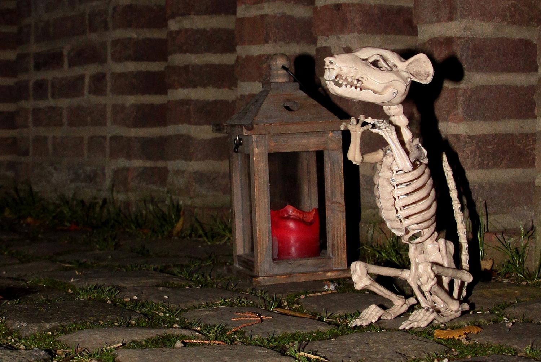Ein Falscher Eid sorgte dafür, dass die Ratten nagten an seinem Gebein ...