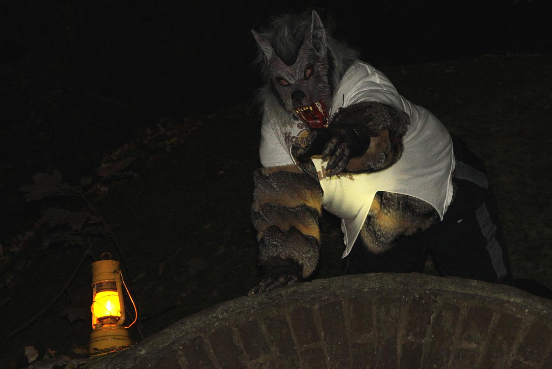 Peter Stupp - der Werwolf ist außer sich.