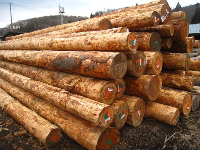 原木(丸太)から、建築用資材を加工しています