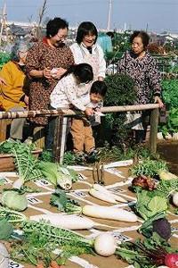 都市住民の余暇、収穫の喜び、食と農の学びの場