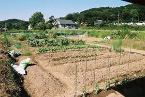 農業経営にも役立つ都市住民との交流・相互理解の場