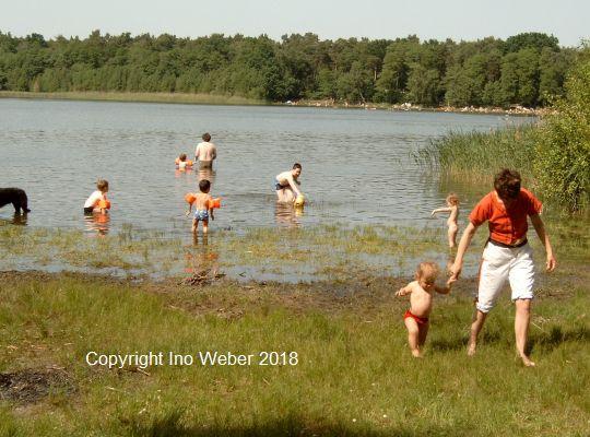 Gorinsee-Badestelle am Bernauer Damm. Man sieht die Stelle im Vorbeifahren. - Blick nach Norden zum großen Waldgebiet.