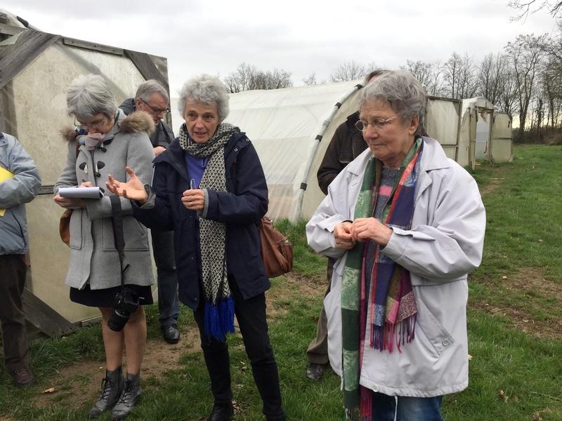 visite d'une ferme maraîchère à Hesloup livrant 90 % de sa production à des Amap locales
