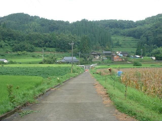 坂道の方から自宅を眺めています。のどかな田園風景です。