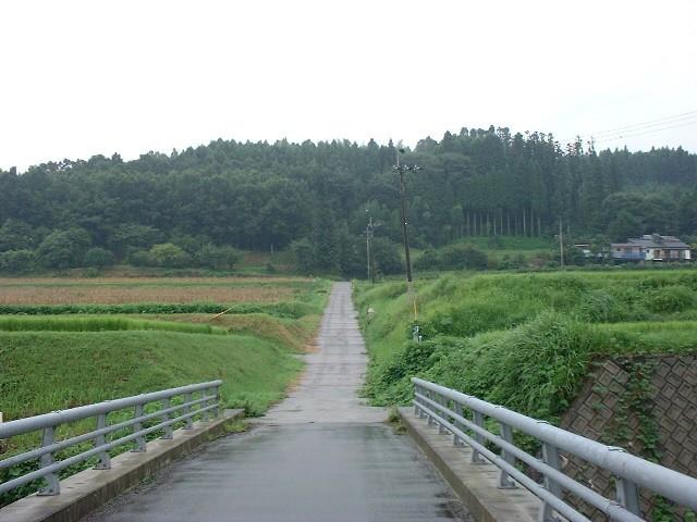 自宅から坂道を見ています。登り切った所に先祖の墓や畑、柿の木などあります。