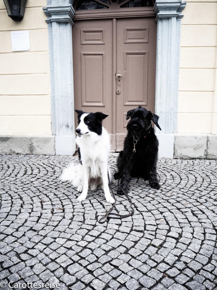 Schillers Wohnhaus. Nur einen kurzen Spaziergang von Goethe entfernt