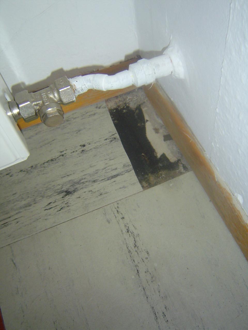 LINDENTHAL Umweltdienstleistungen: Floorflexplatten und Kleber (asbesthaltig)